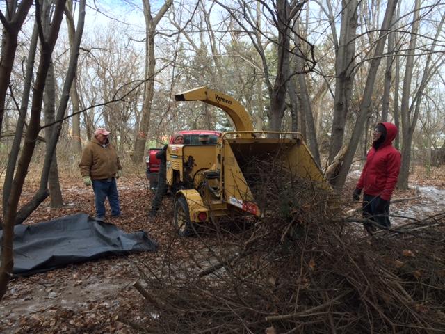 General Brock Park woodlot clean up